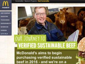 Mc Sustainability
