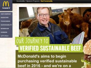 Mc Sustainability